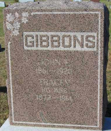 NITCHIE GIBBONS, TRACEY - Buffalo County, Nebraska | TRACEY NITCHIE GIBBONS - Nebraska Gravestone Photos