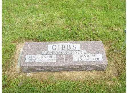 KNERL GIBBS, ALICE - Buffalo County, Nebraska   ALICE KNERL GIBBS - Nebraska Gravestone Photos