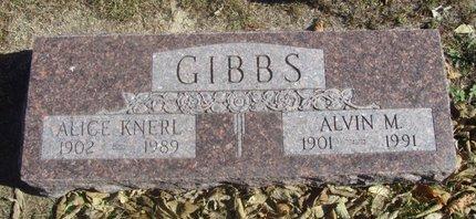 KNERL GIBBS, ALICE - Buffalo County, Nebraska | ALICE KNERL GIBBS - Nebraska Gravestone Photos
