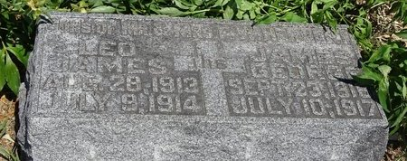 HERVERT, LEO JAMES - Buffalo County, Nebraska | LEO JAMES HERVERT - Nebraska Gravestone Photos