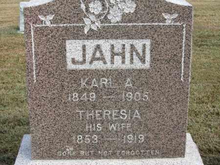 JAHN, THERESIA - Buffalo County, Nebraska | THERESIA JAHN - Nebraska Gravestone Photos