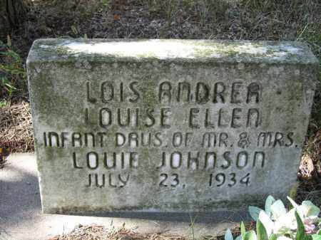 JOHNSON, LOIS ANDREA - Buffalo County, Nebraska | LOIS ANDREA JOHNSON - Nebraska Gravestone Photos