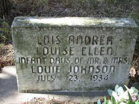 JOHNSON, LOIS ANDREA - Buffalo County, Nebraska | LOIS ANDREA JOHNSON - Nebraska Gravestone Photos