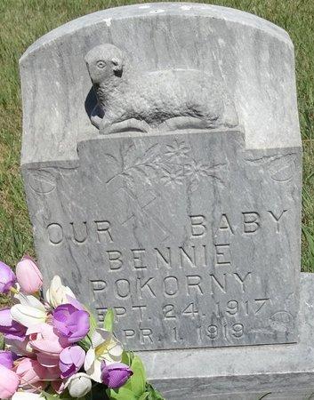 POKORNY, BENNIE - Buffalo County, Nebraska | BENNIE POKORNY - Nebraska Gravestone Photos
