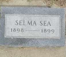 SEA, SELMA - Buffalo County, Nebraska | SELMA SEA - Nebraska Gravestone Photos