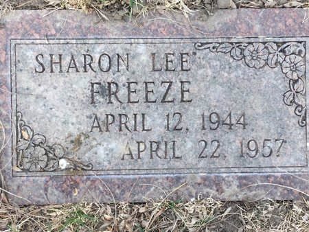 FREEZE, SHARON LEE - Buffalo County, Nebraska | SHARON LEE FREEZE - Nebraska Gravestone Photos