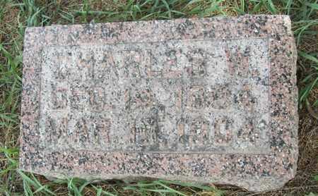 THORNTON, CHARLES - Buffalo County, Nebraska | CHARLES THORNTON - Nebraska Gravestone Photos