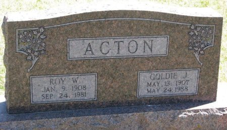ACTON, ROY W. - Burt County, Nebraska | ROY W. ACTON - Nebraska Gravestone Photos
