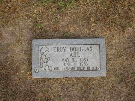 AHL, TROY DOUGLAS - Burt County, Nebraska | TROY DOUGLAS AHL - Nebraska Gravestone Photos