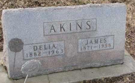 AKINS, DELIA - Burt County, Nebraska | DELIA AKINS - Nebraska Gravestone Photos