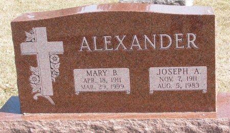 ALEXANDER, JOSEPH A. - Burt County, Nebraska | JOSEPH A. ALEXANDER - Nebraska Gravestone Photos