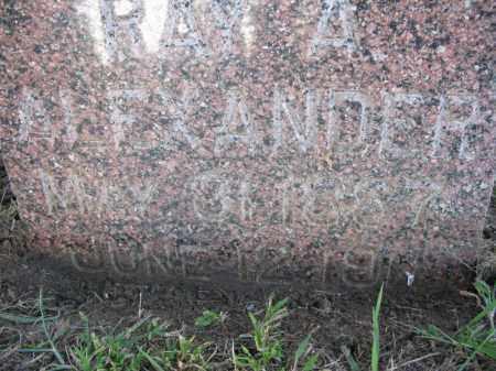 ALEXANDER, RAY. A. - Burt County, Nebraska | RAY. A. ALEXANDER - Nebraska Gravestone Photos