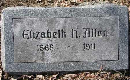 ALLEN, ELIZABETH - Burt County, Nebraska | ELIZABETH ALLEN - Nebraska Gravestone Photos
