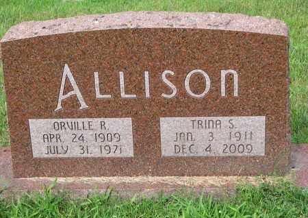 ALLISON, TRINA S. - Burt County, Nebraska | TRINA S. ALLISON - Nebraska Gravestone Photos