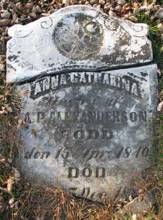 ANDERSON, ANNA CATHARINA - Burt County, Nebraska   ANNA CATHARINA ANDERSON - Nebraska Gravestone Photos