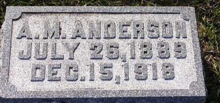 ANDERSON, ADOLPH M. - Burt County, Nebraska   ADOLPH M. ANDERSON - Nebraska Gravestone Photos
