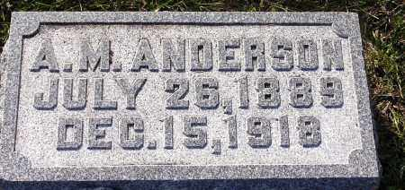ANDERSON, ADOLPH M. - Burt County, Nebraska | ADOLPH M. ANDERSON - Nebraska Gravestone Photos