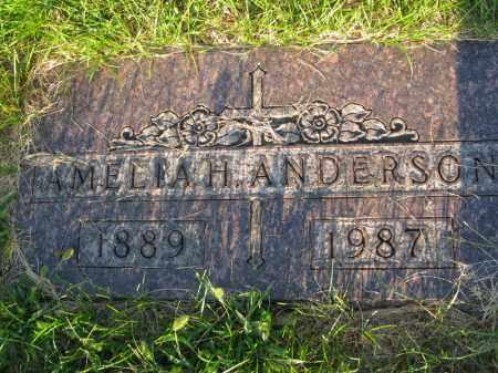 ANDERSON, AMELIA H. - Burt County, Nebraska   AMELIA H. ANDERSON - Nebraska Gravestone Photos