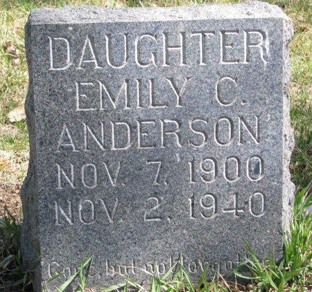 PETERSON ANDERSON, EMILY C. - Burt County, Nebraska | EMILY C. PETERSON ANDERSON - Nebraska Gravestone Photos
