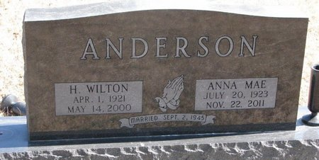 ANDERSON, H. WILTON - Burt County, Nebraska | H. WILTON ANDERSON - Nebraska Gravestone Photos