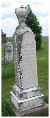 ANDERSON, INFANT SON - Burt County, Nebraska | INFANT SON ANDERSON - Nebraska Gravestone Photos