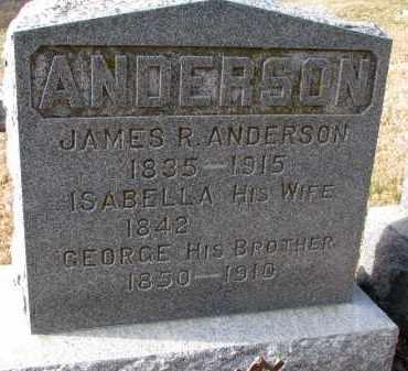 ANDERSON, GEORGE - Burt County, Nebraska | GEORGE ANDERSON - Nebraska Gravestone Photos