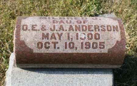 ANDERSON, MILDRED J. - Burt County, Nebraska | MILDRED J. ANDERSON - Nebraska Gravestone Photos