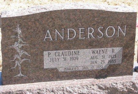 ANDERSON, P. CLAUDINE - Burt County, Nebraska | P. CLAUDINE ANDERSON - Nebraska Gravestone Photos