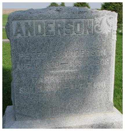 ANDERSON, PETER C. (G.) - Burt County, Nebraska | PETER C. (G.) ANDERSON - Nebraska Gravestone Photos