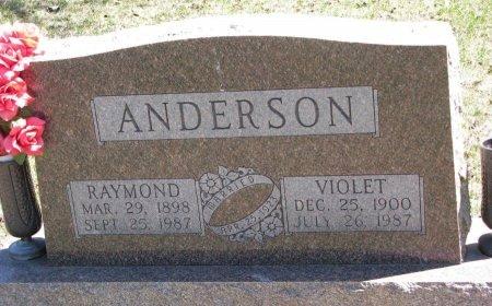 ANDERSON, VIOLET - Burt County, Nebraska | VIOLET ANDERSON - Nebraska Gravestone Photos