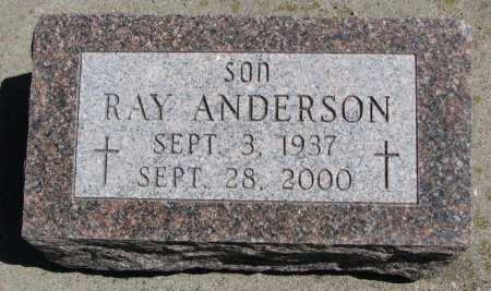 ANDERSON, RAY - Burt County, Nebraska | RAY ANDERSON - Nebraska Gravestone Photos