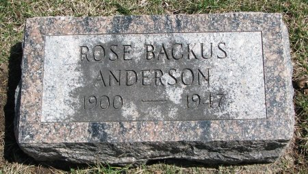 ANDERSON, ROSE - Burt County, Nebraska | ROSE ANDERSON - Nebraska Gravestone Photos