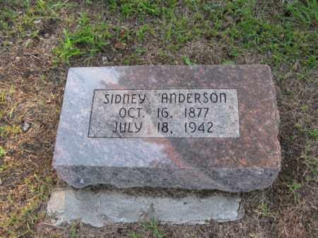 ANDERSON, SYDNEY - Burt County, Nebraska | SYDNEY ANDERSON - Nebraska Gravestone Photos