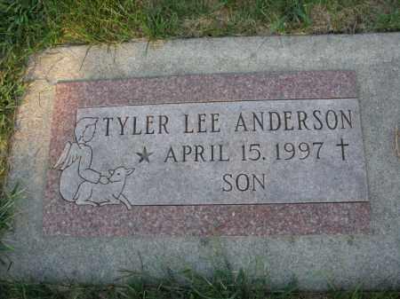 ANDERSON, TYLER LEE - Burt County, Nebraska | TYLER LEE ANDERSON - Nebraska Gravestone Photos