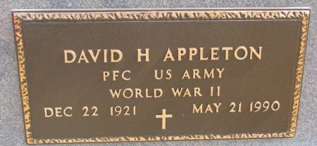 APPLETON, DAVID H. (MILITARY) - Burt County, Nebraska | DAVID H. (MILITARY) APPLETON - Nebraska Gravestone Photos