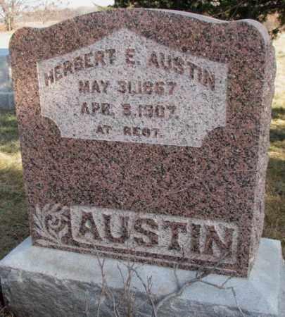 AUSTIN, HERBERT E. - Burt County, Nebraska | HERBERT E. AUSTIN - Nebraska Gravestone Photos