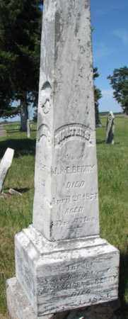 BERRY, WALTER S. - Burt County, Nebraska | WALTER S. BERRY - Nebraska Gravestone Photos