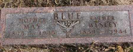 BLUE, WESLEY - Burt County, Nebraska | WESLEY BLUE - Nebraska Gravestone Photos