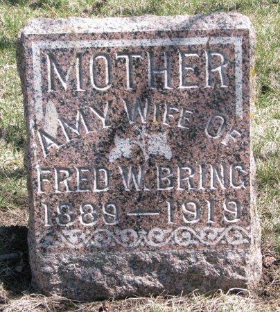 BRING, AMY - Burt County, Nebraska | AMY BRING - Nebraska Gravestone Photos