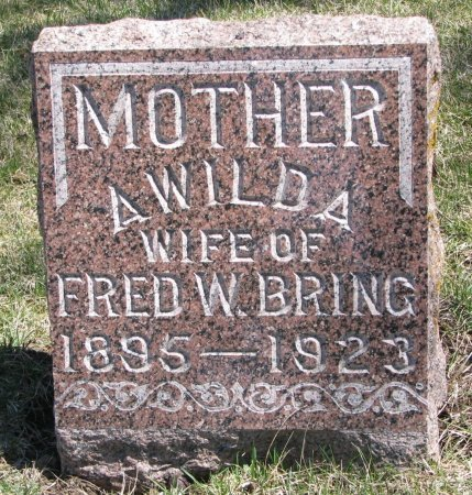 JOHNSON BRING, AWILDA - Burt County, Nebraska | AWILDA JOHNSON BRING - Nebraska Gravestone Photos