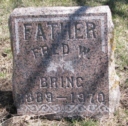 BRING, FRED W. - Burt County, Nebraska | FRED W. BRING - Nebraska Gravestone Photos