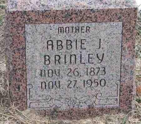 BRINLEY, ABBIE J. - Burt County, Nebraska   ABBIE J. BRINLEY - Nebraska Gravestone Photos