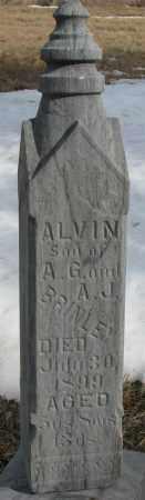 BRINLEY, ALVIN - Burt County, Nebraska | ALVIN BRINLEY - Nebraska Gravestone Photos