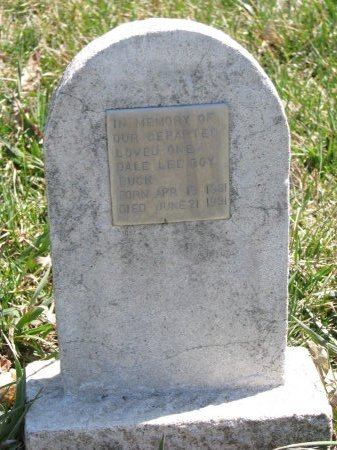 BUCK, DALE LEE ROY - Burt County, Nebraska | DALE LEE ROY BUCK - Nebraska Gravestone Photos