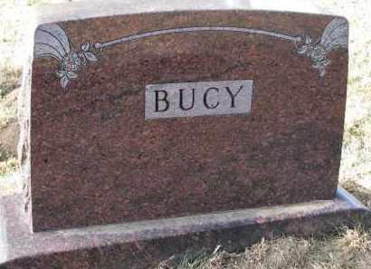 BUCY, FAMILY STONE - Burt County, Nebraska | FAMILY STONE BUCY - Nebraska Gravestone Photos