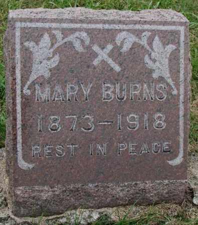BURNS, MARY - Burt County, Nebraska | MARY BURNS - Nebraska Gravestone Photos