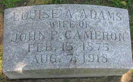 ADAMS CAMERON, LOUISE A. - Burt County, Nebraska | LOUISE A. ADAMS CAMERON - Nebraska Gravestone Photos
