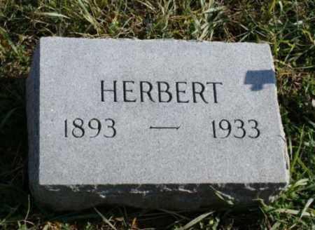 CARLSON, HERBERT - Burt County, Nebraska | HERBERT CARLSON - Nebraska Gravestone Photos