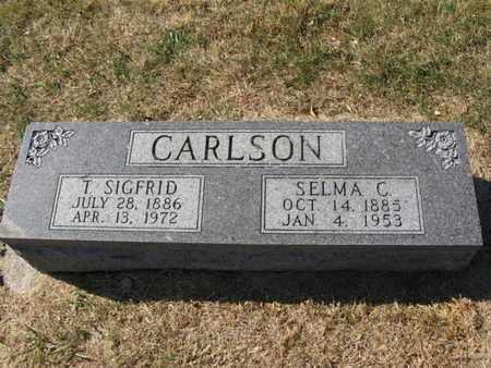 CARLSON, SELMA C. - Burt County, Nebraska | SELMA C. CARLSON - Nebraska Gravestone Photos