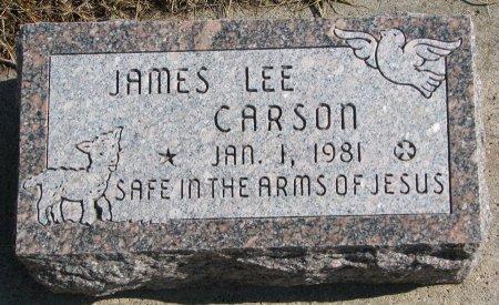 CARSON, JAMES LEE - Burt County, Nebraska   JAMES LEE CARSON - Nebraska Gravestone Photos